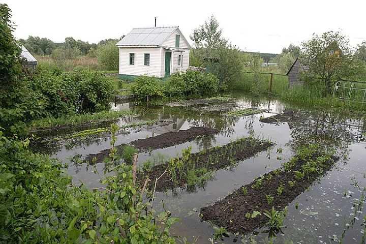 drenazh-uchastka-gruntovye-vody