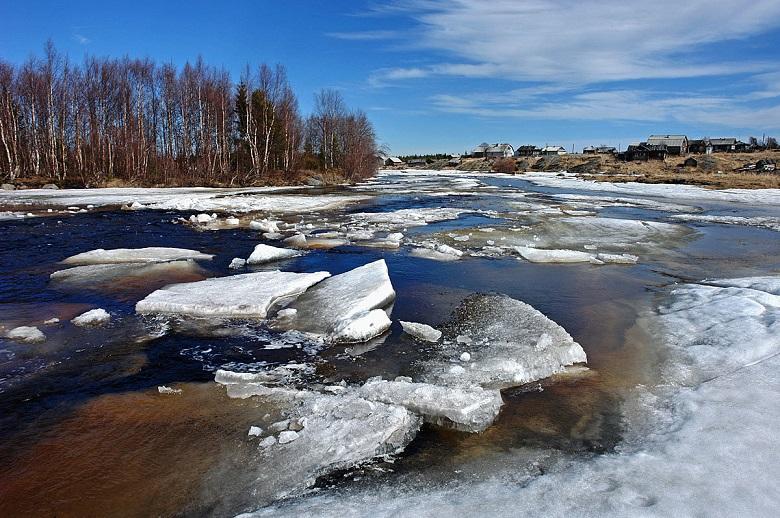 ледо на сайт